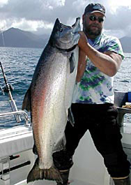 A king salmon that DIDN'T get away!